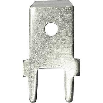 Vogt Verbindungstechnik 3866A.68 conector lâmina largura do conector: 6,3 mm conector espessura: 0.8 mm 180 ° não isolada o Metal 100 PC (s)