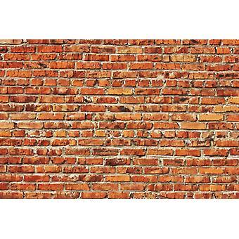 Fond d'écran Mural Red Brick Wall