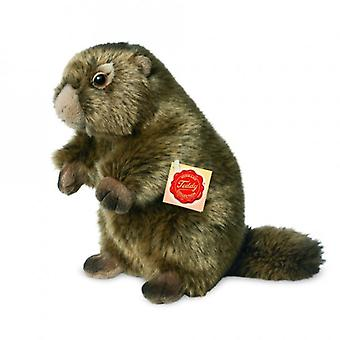 Hermann Teddy Hug Marmot