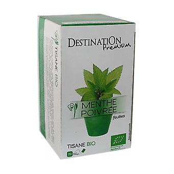 Peppermint Infusion 20 units of 1.5g