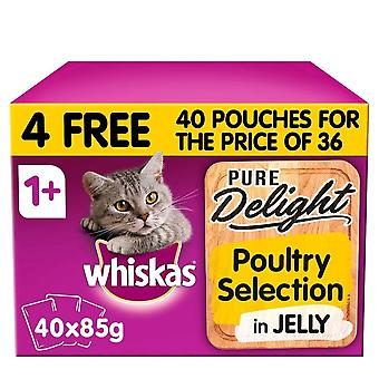 Whiskas 1+ Cat Pouches Pure Delight Poultry Selection In Jelly Mega Pack 40 pour 36 (85g)