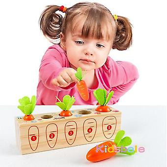 Trä Montessori leksaker för småbarn form storlek sortering pussel block spel morötter utveckling