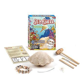 Sea Shell Fossils Science Kits Education Archeology Biology Birthday Gift