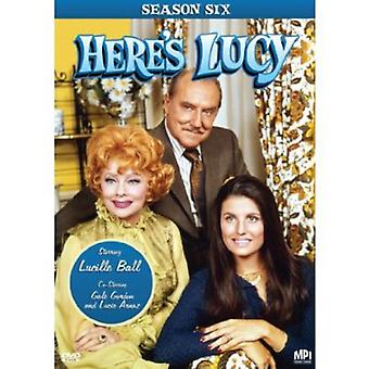 Here's Lucy: Season 6 [DVD] USA import