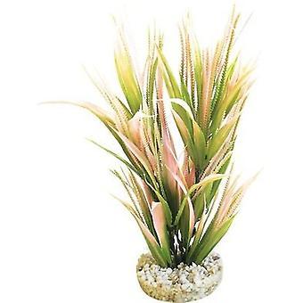 Sydeco Bioaqua Exotic H.22Cm Sydeco (Poissons , Décoration , Plantes artificielles)