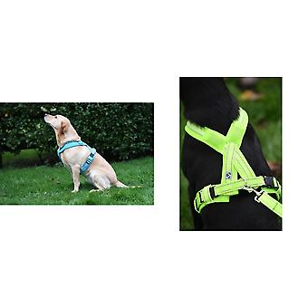 Woofmasta Flashing Hi-Viz Dog Harness