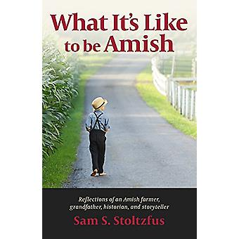 What It's Like to Be Amish by Sam S. Stoltzfus - 9781947597020 Book