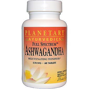 Planetary Herbals, Ayurvedics, Full Spectrum Ashwagandha, 570 mg, 60 Tablets