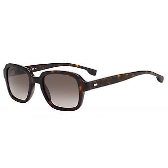 Sunglasses Men 1058/S086/HA Men's havanna/brown