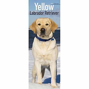 Otter House 2021 Slim Calendar- Yellow Labrador Retriever