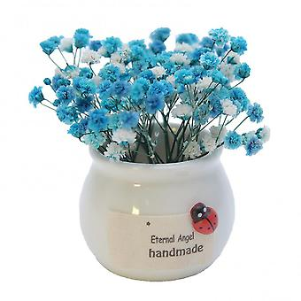 Gypsophila Dried Flower Bouquet With Porcelain Vases Dried Flowers With Branches