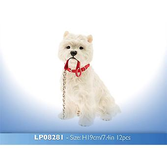 Walkies sittende West Highland Terrier