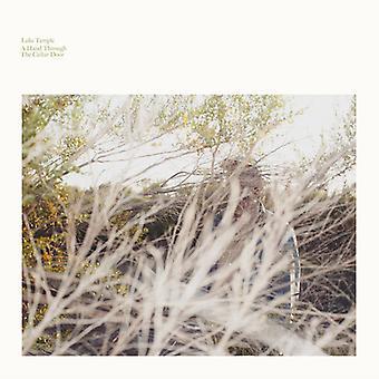 Luke Temple - A Hand Through the Cellar Door [Vinyl] USA import