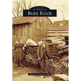Burr Ridge by Sharon L Comstock Ph D - 9781467113397 Book