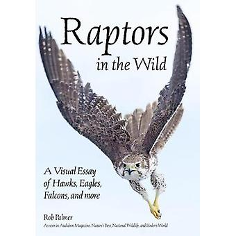 Raptors In The Wild - A Visual Essay of Hawks - Eagles - Falcons - and