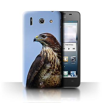 STUFF4 Case/Cover for Huawei Ascend G510/Eagle/Birds of Prey