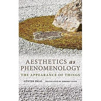 Aesthetics as Phenomenology - The Appearance of Things by Gunter Figal