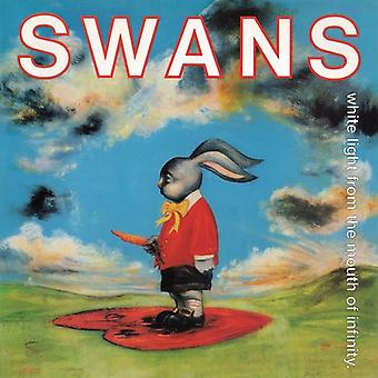 Swans - White Light From the Mouth of Infinity [CD] USA import