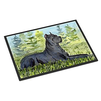 Carolines Treasures  SS8682MAT Cane Corso Indoor Outdoor Mat 18x27 Doormat