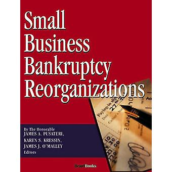 Small Business Bankruptcy Reorganizations by Pusateri & James & A