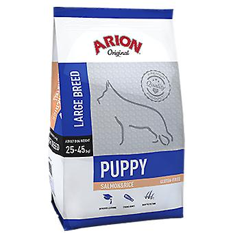 Arion Original Puppy Large Salmon&Rice (Dogs , Dog Food , Dry Food)