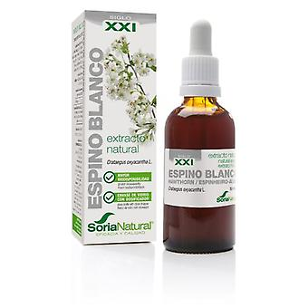 Soria Natural Extract of Hawthorn Siglo XXI