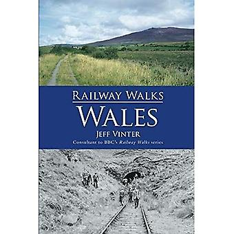 Railway Walks: Wales [Illustrated]
