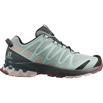 サロモンXAプロ3D V8 411179トレッキング一年女性靴