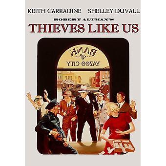 Thieves Like Us [DVD] USA import