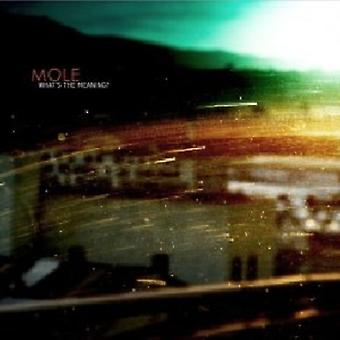 Mole - What's the Meaning [CD] USA import