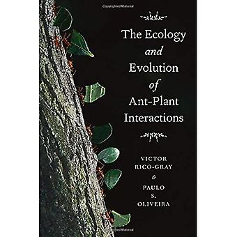 The Ecology and Evolution of Ant-plant Interactions (Interspecific Interactions (Paperback))