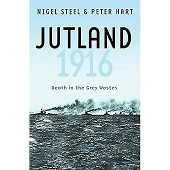 Jutland 1916: Mort dans les déchets gris (livres de poche militaires de Cassell)