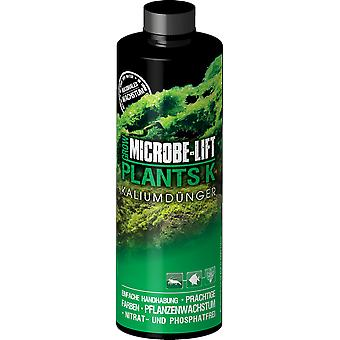 Microbe-Lift Plants K - Potassium (Fish , Plant Care , Pesticides)