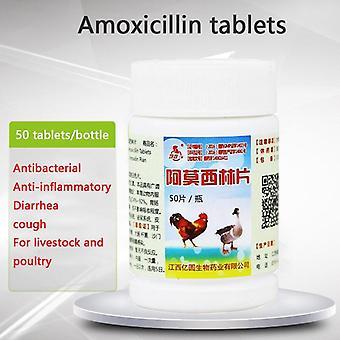 Amoksisilliini 50 Tablettia - Pet Siipikarja Karja Antibakteerinen kana ankka ja hanhen hengitysteiden antibiootti anti inflammatorinen lääketiede