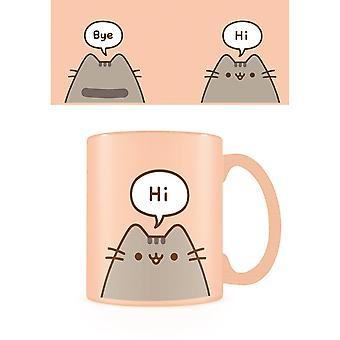 Pusheen Hello Goodbye Mug