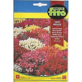 Semillas Fitó Dwarf antirrhine magic tapestry (Garden , Gardening , Seeds)