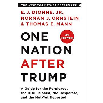 One Nation After Trump by E J Dionne Jr
