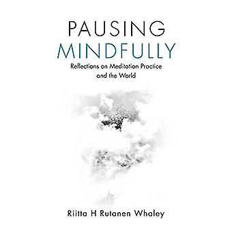 Pausing Mindfully - Reflections on Meditation Practice and the World b