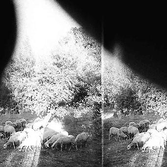 Godspeed You! Black Emperor - Asunder, Sweet And Other Distress CD