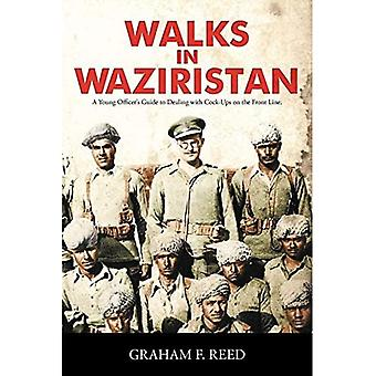 Walks in Waziristan: A Young Officer's Guide to Dealing with Co*k-Ups on the Front Line.