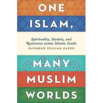 Ein Islam, Welten von muslimischen: Spiritualität, Identität und Widerstand in islamischen Ländern (Religion und Global...