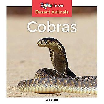 Cobras (animaux de désert)