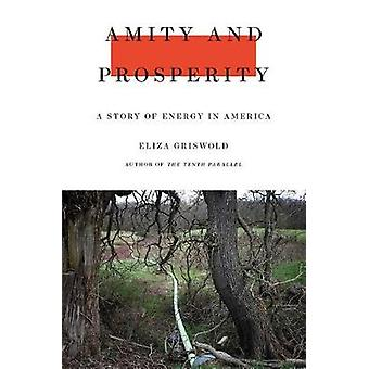 Amity and Prosperity - One Family and the Fracturing of America by Ami