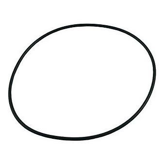 Pentair Sta-Rite U9-169 Seal Plate O-Ring