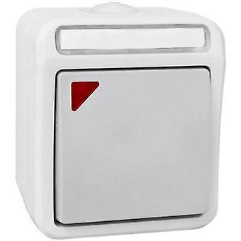 Peranova 102449 Wet room switch product range Switch Pera Light grey, Dark grey