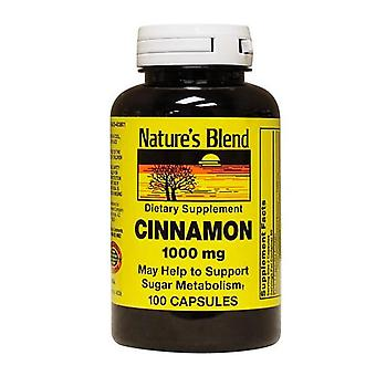Nature's blend cinnamon, 1000 mg, capsules, 100 ea