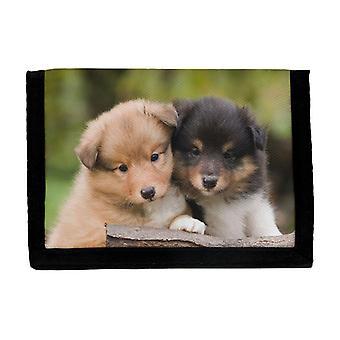 Portefeuille de chiots de chien de berger de Shetland