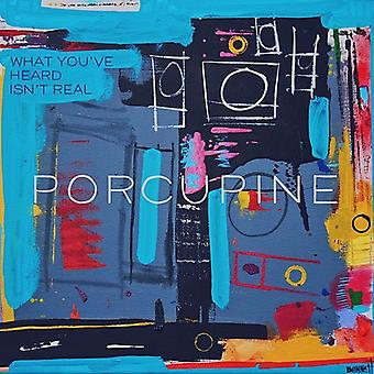 Porcupine - What You'Ve Heard Isn't Real [CD] USA import