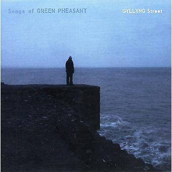 Gyllyng Street [CD] USA import