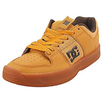 DC Shoes Lynx Zero Mens Skate Trainers in Wheat